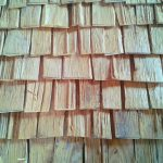 All Good in the Wood- Rustic Baby Shingles