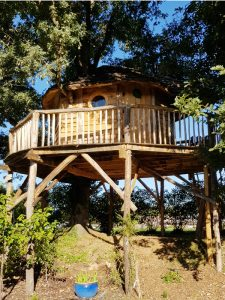 All Good in the Wood Wonky gallery creative Tree house creations