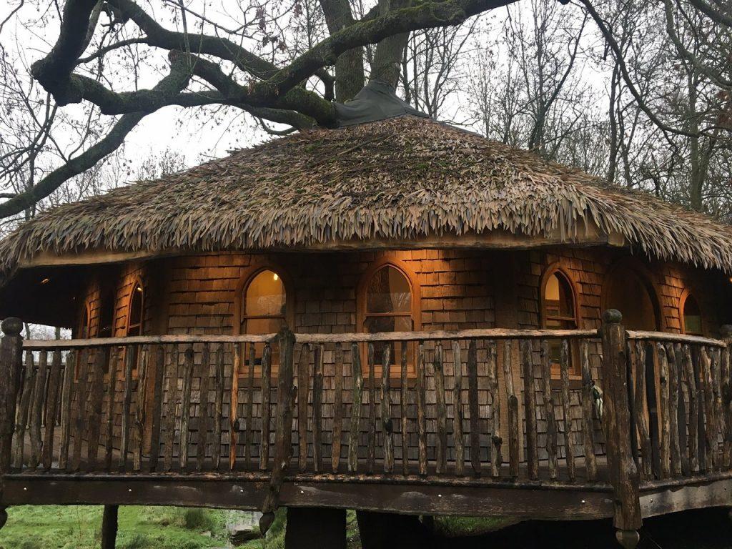 treeopia-idyllic-tree-house oak shingles